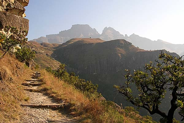 drakensberg_pictures_bugbog_sphinx_central_600